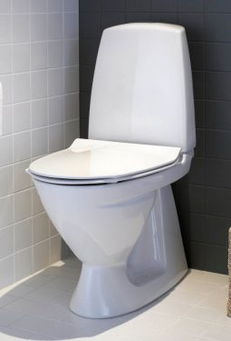 ifoe_sign_toilet_image_1